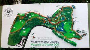 Зоопарк в Гданьске
